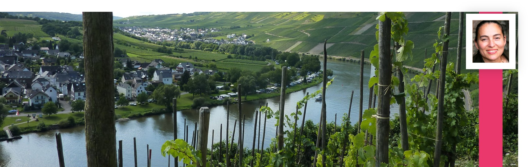 Panorma Wolf Mosel Traben-Trarbach